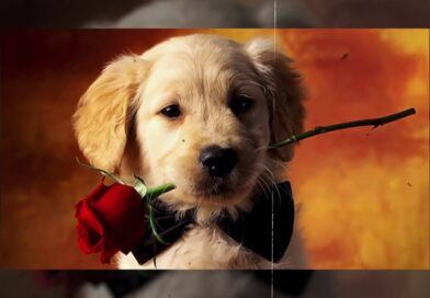 BEST PICS OF DOGS ON POSTCARDS – OLD WALLPAPER STYLE